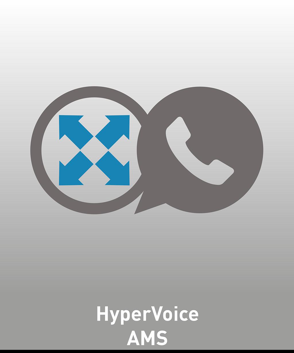 HyperVoice AMS Lizenz