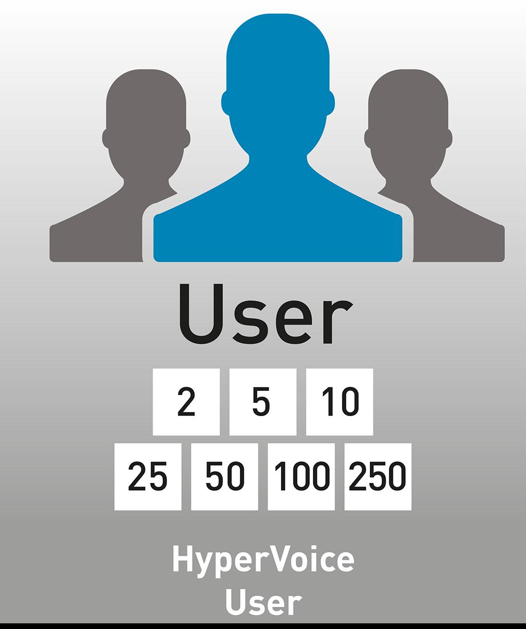 Logo der AGFEO HyperVoice User Lizenz